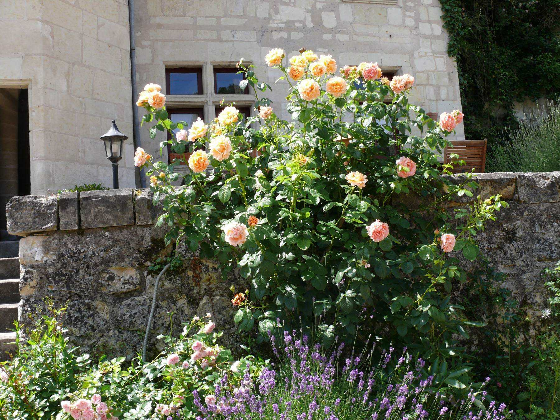 Bed and Breakfast Saumur
